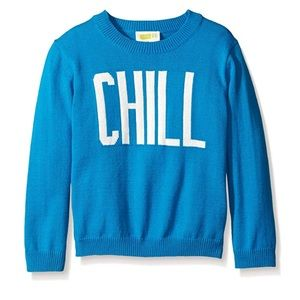 Baby Boy's Blue Chill Pullover Sweater